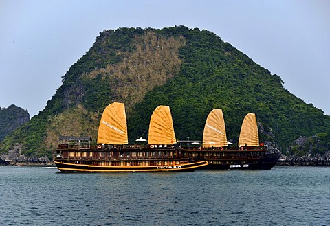 Junks in Halong bay, Vietnam, Southeast Asia