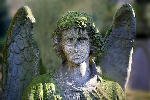Weathered angel statue on a grave, Melaten-Friedhof cemetery, Cologne, North Rhine-Westphalia, Germany, Europe