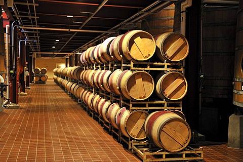 French oak barrels in the aging cellar of the Robert Mondavi Winery, Napa Valley, California, USA