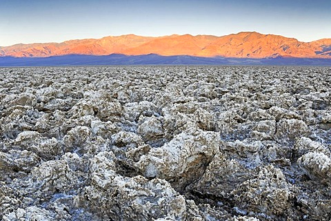 Morning light at the Devil's Golf Course, Death Valley National Park, California, USA, North America
