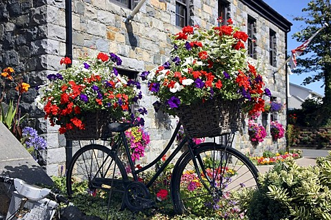 Floral decoration of a bicycle shop, Guernsey, Channel Islands, Europe