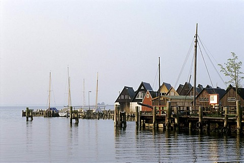 Boat houses at the Bodden, brackish bodies of water, Althagen Harbor, Ahrenshoop, Fischland-Darss-Zingst, Coast of the Baltic Sea, Mecklenburg-Western Pomerania, Germany, Europe