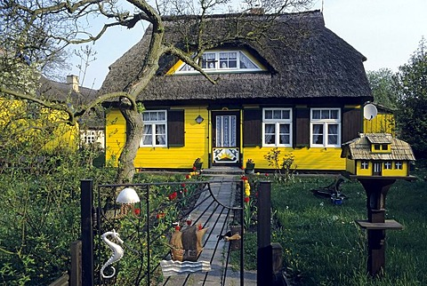Idyllic house with a thatched roof and a garden, Born, Fischland-Darss-Zingst, Coast of the Baltic Sea, Mecklenburg-Western Pomerania, Germany, Europe