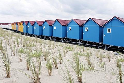 Protective dune planted with beach grass, colorful beach huts, Vlissingen, Walcheren, Zeeland, Netherlands, Benelux, Europe