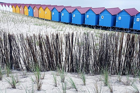 Fortified protective dune planted with beach grass, colorful beach huts, Vlissingen, Walcheren, Zeeland, Netherlands, Benelux, Europe