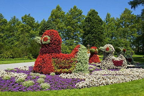 Flower sculpture on Mainau flowering island, Lake Constance, Baden-Wuerttemberg, Germany, Europe