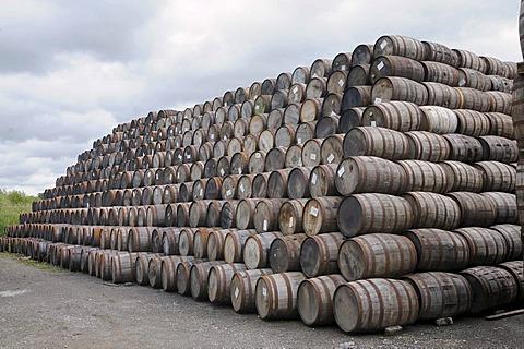 Stacked wooden whiskey barrels, oldest licensed whiskey distillery in the world, Locke's Distillery, Kilbeggan, Westmeath, Midlands, Republic of Ireland, Europe