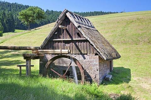 Mooswaldmuehle, mill, Black Forest, Baden-Wuerttemberg, Germany, Europe