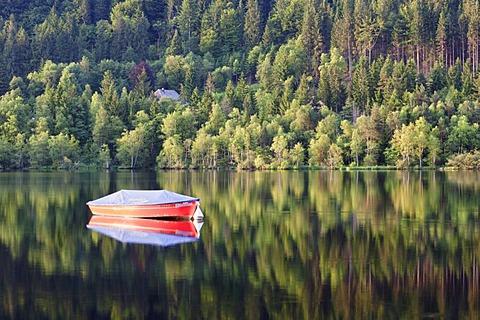 Boat on Lake Titisee, Titisee-Neustadt, Black Forest, Baden-Wuerttemberg, Germany, Europe
