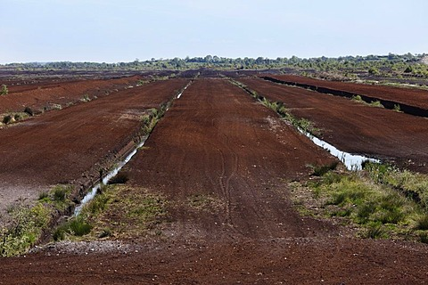Peat harvest, Tullamore, County Offaly, Leinster province, Republic of Ireland, Europe