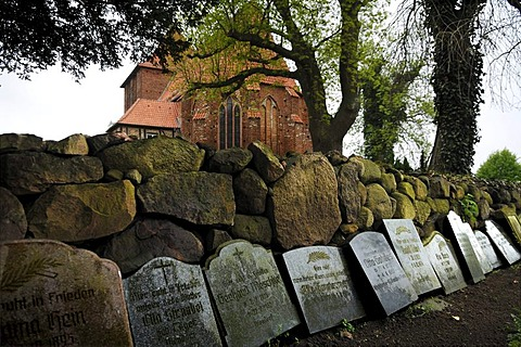 Grave slabs leaning against a dry wall made of erratic blocks, in the old village cemetery, old village church from the 15th Century in the back, Hohenkirchen, Mecklenburg-Western Pomerania, Germany, Europe