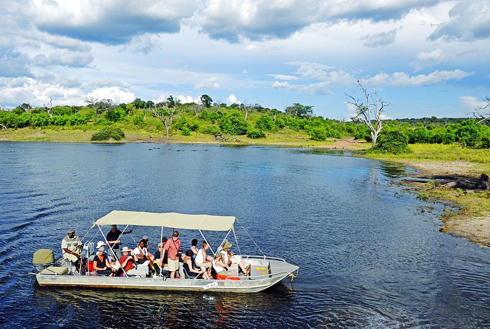 Safari on the Chobe River, boat trip with tourists in the Chobe National Park near Kasane, Botswana, Africa