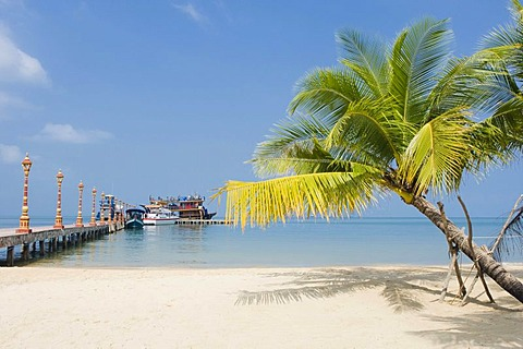 Palm tree on the sandy beach of Victory Beach, Sihanoukville, Cambodia, Indochina, Southeast Asia