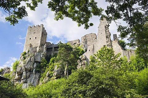 Weissenstein Castle ruins, Bavarian Forest National Park, Lower Bavaria, Germany, Europe