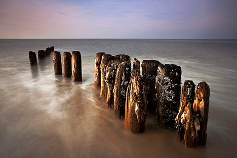 Groynes at Kampen, Sylt Island, Germany, Europe