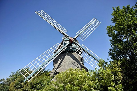 Charlotte Windmill in the Geltinger Birk Nature Reserve, Schleswig-Holstein, Germany, Europe