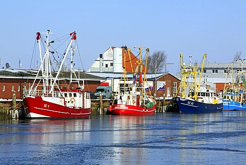 Fishing boats in the ice-covered harbour of Buesum in winter on the North Sea coast, Dithmarschen district, Schleswig-Holstein, Germany, Europe