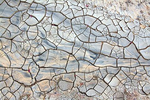 Desiccation cracks in a riverbed in the desert, Wadi in the Dana Nature Reserve near Feynan, Hashemite Kingdom of Jordan, Middle East, Asia - 832-154550