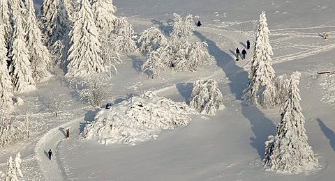 Aerial view, Mt. Kahler Asten, snow-covered pines, walkers, snow, winter, Winterberg, North Rhine-Westphalia, Germany, Europe