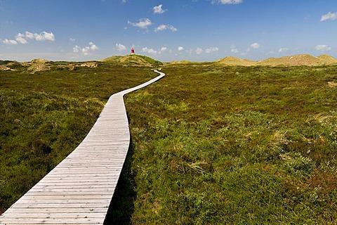 Boardwalk through the dunes and lighthouse, Amrum island, Schleswig-Holstein, Germany, Europe