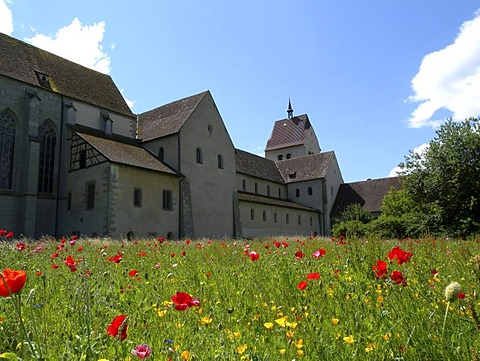Meadow, St. Maria and Markus Cathedral, Unesco World Heritage Site, Mittelzell, Reichenau island, Lake Constance, Baden-Wuerttemberg, Germany, Europe