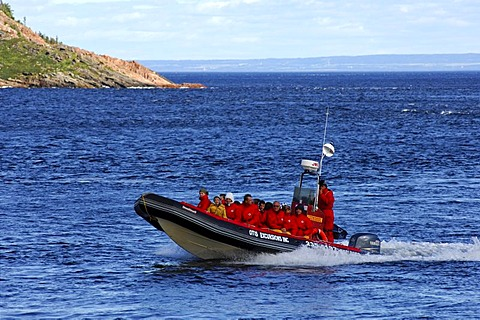 Tourists in red protective suits in an inflatable Zodiac boat, of the brand Otis Excursions Inc., whale-watching on St. Lawrence River, Tadoussac, Canada