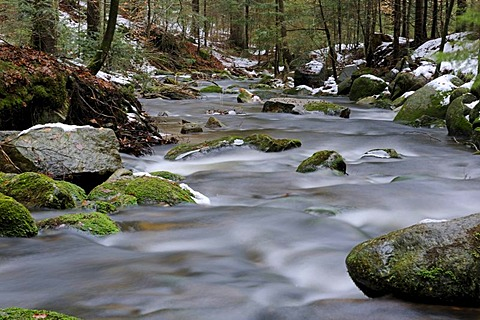 Flowing movement, snow, ice, Kleine Ohe mountain stream, Nationalpark Bayrischer Wald Bavarian Forest National Park, Bavaria, Germany, Europe