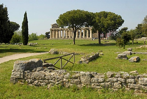 Ruins in Paestum, Ceres Tempel at back, Italy, Europe
