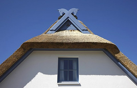 Gable of a summer cottage, near Mukran, thatched cottage, northeast of the Ruegen island, Mecklenburg-Western Pomerania, Germany, Europe