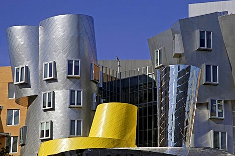 Ray and Maria Stata Center, architect Frank Gehry, MIT, Massachusetts Institute of Technology, Cambridge, New England, USA