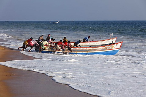 Fishermen pushing their fishing boat into the sea, Somatheeram Beach, Malabarian Coast, Malabar, Kerala state, India, Asia