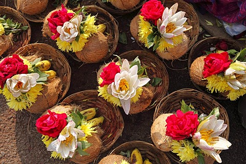 Bouquets with coconuts as offerings, Chamundi Hill, Mysore, Karnataka, South India, India, South Asia, Asia