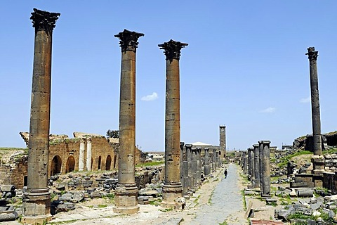 Alley with columns, excavation site in the Roman ruins of Bosra, Syria, Asia