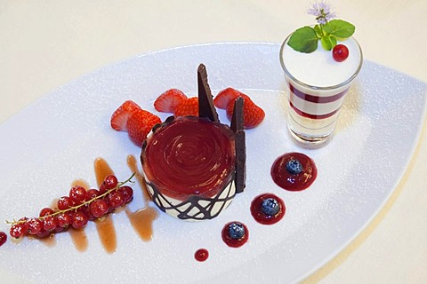 Dessert, Bavarese al cioccolato bianco con gelatina all arancia cuose con di crema gorgonzola e al sedano candito in the top class restaurant Aquamatta, Capolona, Tuscany, Italy, Europe
