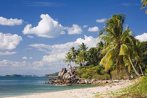 Palm beach, Klong Khong Beach, Ko Lanta or Koh Lanta island, Krabi, Thailand, Asia