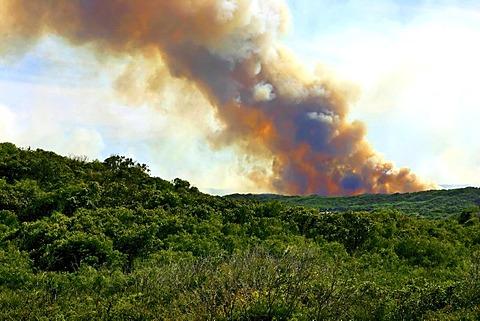 Smoke from a bushfire in D'Entrecasteaux National Park, Western Australia, Australia