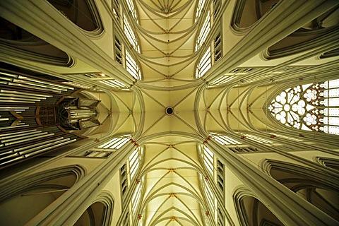 Ceiling of the Altenberger Dom or Bergischer Dom, Altenberg Cathedral, Altenberg, Odenthal, Rheinisch-Bergischer-Kreis district, North Rhine-Westphalia, Germany, Europe