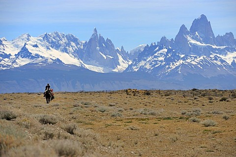 Mounted goucho in front the Andes with Mt. Fitz Roy and Mt. Cerro Torre, El Chalten, Andes, Patagonia, Argentina, South America