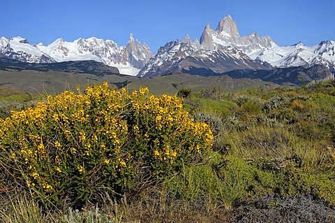 Mt. Cerro Torre and Mt. Fitz Roy, El Chalten, Andes, Patagonia, Argentina, South America