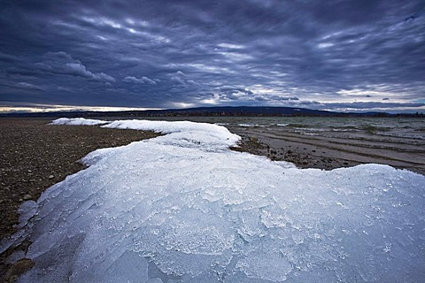 Last winter ice in spring near Allensbach on Lake Constance during heavy storms, Xynthia, Baden-Wuerttemberg, Germany, Europe