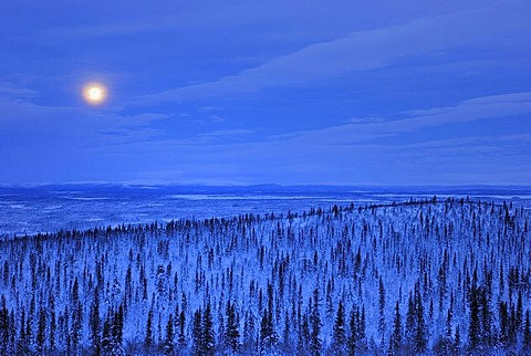 Moon above the Sjaunja Nature Reserve, World Heritage Laponia, Lapland, Norrbotten, Sweden, Scandinavia, Europe - 832-171138