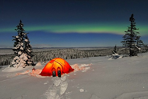 Northern Lights (Aurora borealis) above a tent in the snow, Stubba Nature Reserve, World Heritage Laponia, Lapland, Norrbotten, Sweden, Scandinavia, Europe - 832-171139