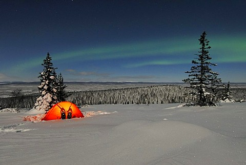 Northern Lights (Aurora borealis) above a tent in the snow, Stubba Nature Reserve, World Heritage Laponia, Lapland, Norrbotten, Sweden, Scandinavia, Europe - 832-171140
