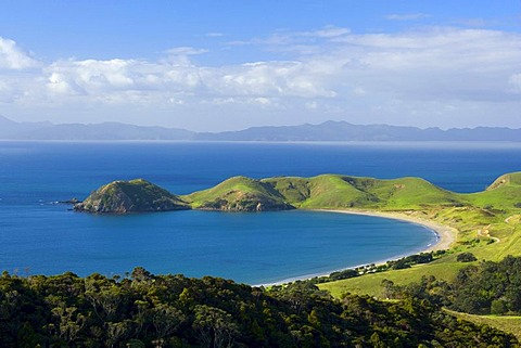 Coast of Coromandel, Bay of Port Jackson, surrounded by green hills and small forests, Port Jackson, Coromandel Peninsula, North Island, New Zealand