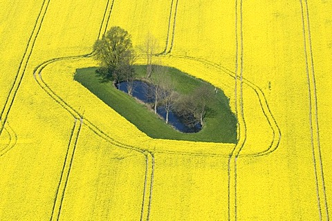 Aerial view of a spring landscape in Mecklenburg-Western Pomerania, Germany, Europe