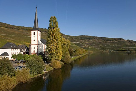 Piesport on the Moselle river, Rhineland-Palatinate, Germany, Europe