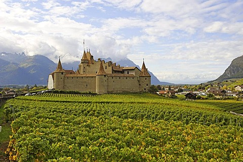 Burg Aigle castle, Aigle, Canton of Vaud, Switzerland, Europe