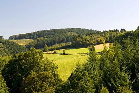 View from Fuerwiggetalsperre, Fuerwigge Dam, over Ebbegebirge Nature Park, Sauerland, North Rhine-Westphalia, Germany, Europe