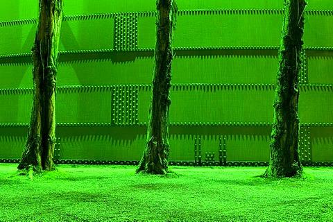 Green-lit tree trunks and steel wall in the former steelworks, Landschaftspark Duisburg Nord landscape park, Ruhrgebiet area, North Rhine-Westphalia, Germany, Europe
