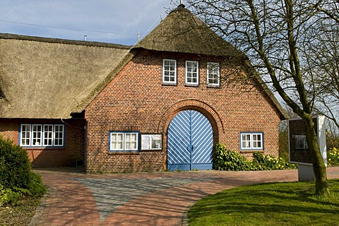Thatched house in the Baltic resort Eckernfoerde, Schleswig-Holstein, Germany, Europe